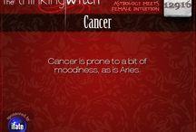 Cancer&Aries