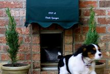 Who Let The Dogs Out? Dog Doors! / Here's a collection of dog doors for inspiration!
