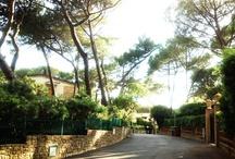 Tuscany Experience |  Tombolo Talasso Talasso  / Bolgheri, Castagneto Carducci, la Costa degli Etruschi, Baratti e tutti i Luoghi più suggestivi nei dintorni del Tombolo Talasso Resort