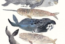 Whales / I love all kinds of wales - I'm fascinated by their size, shape and sound!