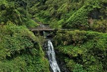 Maui, Hawaii / Best of Maui's activities and attractions.