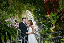 Myriad Gardens in Downtown Oklahoma City / A collection of images that showcase couples who have selected Myriad Gardens as their #wedding #venue. #pictures #weddingphotography #photographer #okc