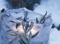 Outdoor winter decorating idea's / by T
