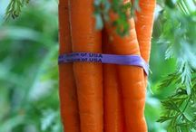 Fruit and Veggie TIme / by Diane Duitsman