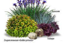 Выкройки цветников