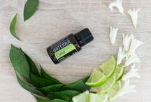 Essential Oils - doTERRA / All things doTERRA!!!!