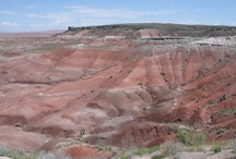 US National Parks I have Traveled / by Leslie Buffington
