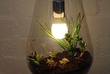 IDEAS W/LIGHT