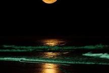 moon 달 / moon 달