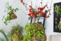 clever ways with flowers