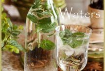 υγιηνα ποτα