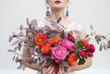 Blumenportrait / Hallo Iris, hier meine Sammlung zu den Blumenportraits. Gib mir doch mal mögliche Termine durch. Ich freue mich darauf.