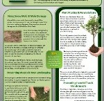 Lawn and Landscape Guides
