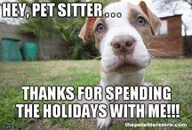 Pet Sitter Memes