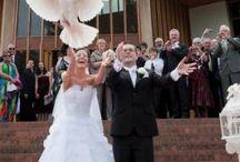 Wedding Dove Releases