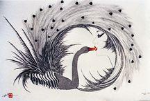 Swan - Art & Nature /