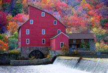 Autumn Splendor / by Nancy Schupple