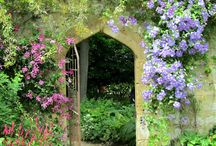 Gardens & Flowers