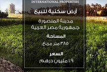 International Properties