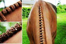 Horse Platting
