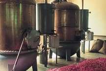 Grasse France / Perfume Grasse