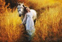 Mood board 6 (horses)