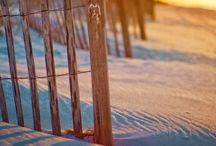 beach / by chris brooks