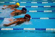 Swimming Sports / Different swimming sports - Waterpool - Beach Sports