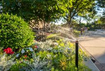 Irrigation / D&H keeps it fresh & beautiful.