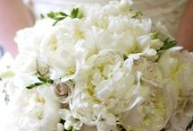 Our Favorite Weddings Bouquets / Just a quick glimpse of some our favorite wedding bouquets
