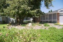 Newly Listed: 1611 Melvin Way, Tustin CA 92780 / Single Family in Tustin. This house is pure PRIDE OF OWNERSHIP. Your buyer will not be disappointed. In a quiet sort out location of Tustin, CA with a park near by and lots of shopping. No expense has been spared in upgrades. http://www.realestatebymercedes.com/listing/101755803-150089920/1611-melvin-way-tustin-ca-92780/