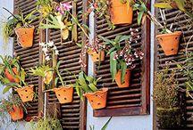 - Terrario/ Horta vertical
