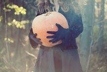 fall. / by Dana Ward