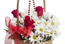 Doğum günü çiçek siparişi / Doğum günü çiçek siparişleriniz için sayfamızı mutlaka ziyaret ediniz. http://www.cicekvitrini.com/cicekler/dogum-gunu-cicek