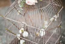 wedding bells / by Denise Lopatka