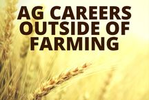 A Look Into: Agriculture / Information about updates, trends, fun facts, and job prospects in the growing field of Agriculture. To apply for Agriculture jobs: https://bit.ly/careernavi / by Nevada Career Studio