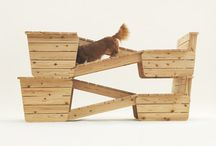 architecture and design for animals