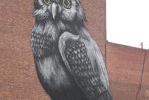 Street & Installation Art