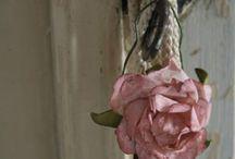 blanc et rose 2