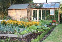 Garden - Greenhouse