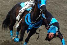 Trucos a caballos / Trucos
