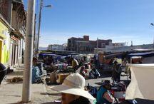 Bolivie, sel & Sucre / Desert de sel, cactus candélabres géants et jungle de Sucre !
