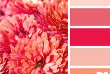 Color Pallets / by Toni Chandler Flowers & Events