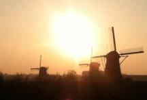 Dutch / by Heidi