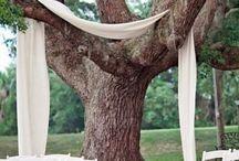 wedding ideas  / by Melissa Swecker (Melissa Swecker Photography)