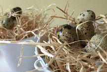 Fagyapot / dekoráció, design, természetes csomagolás, termékvédelem, térkitöltő erdei fenyőből,