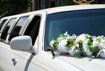 Limousine and Limo Bus Service