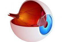 All about your eyes / All you need to know about keeping your eyes healthy you will find here!