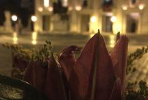 La Mia Roma / Le foto fatte da me...