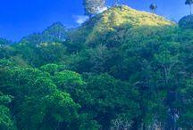 Manado / Indonesia North Sulawesi